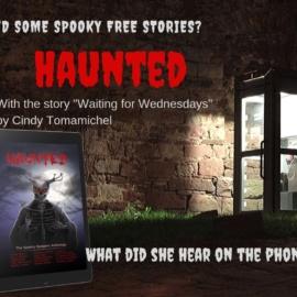 Horror Anthology: Haunted
