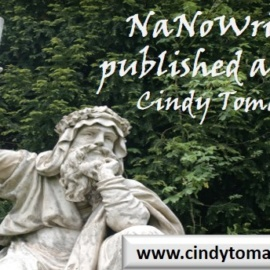 NaNoWriMo for published authors