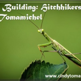World Building: Hitchhiker bugs